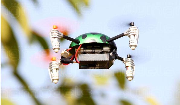Walkera Qr Ladybird V2. FPV - Devo F4 12